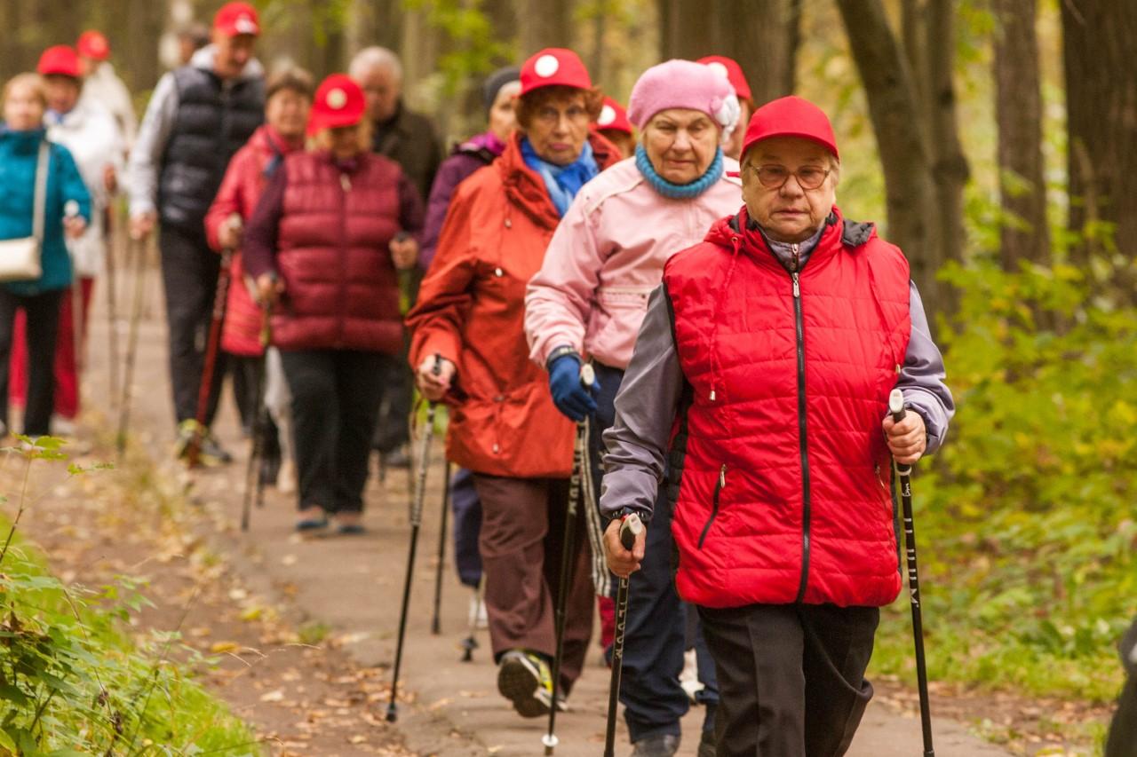 скандинавская ходьба пожилые картинка сезон этом году