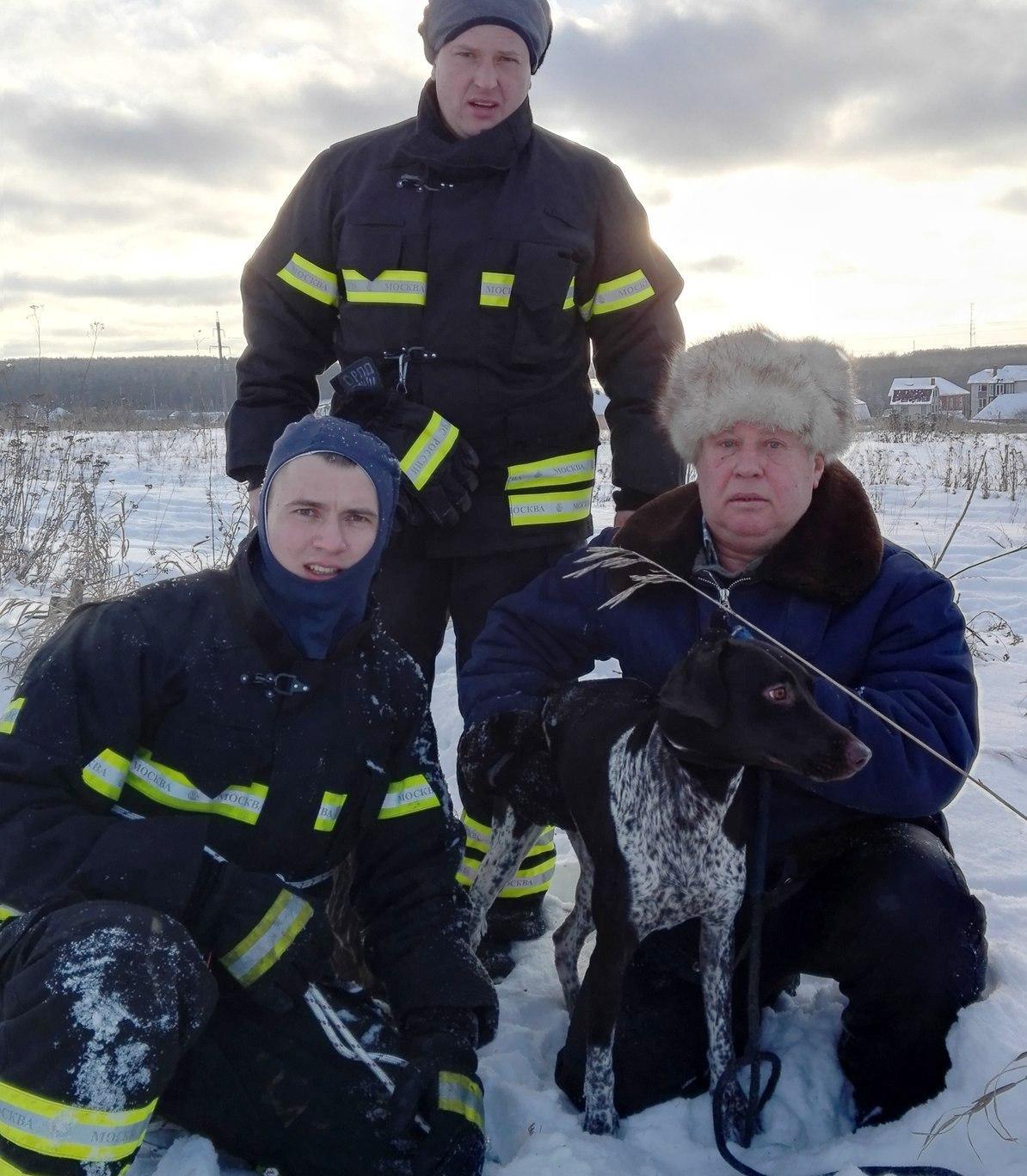 Работники МЧС спасли собаку изканализационного люка