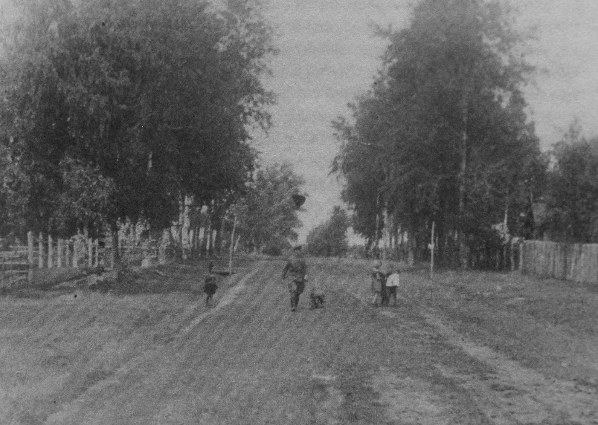 Улица Садовая в посёлке Львовском. Конец 1940 годов
