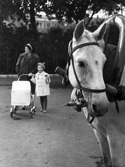 1965 год.