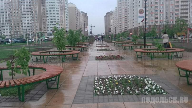 15 мая 2016. Лес Победы под дождем.