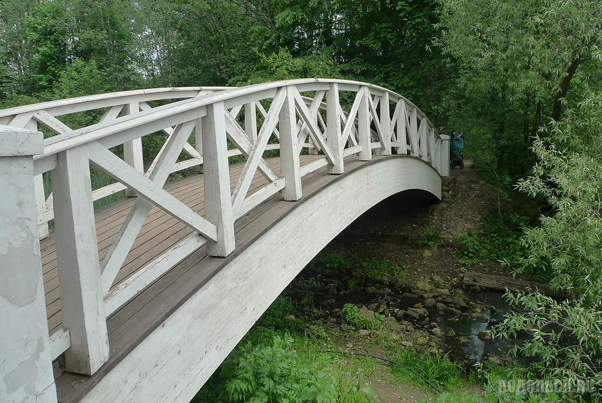 Мост через пруд. Июнь 2016.