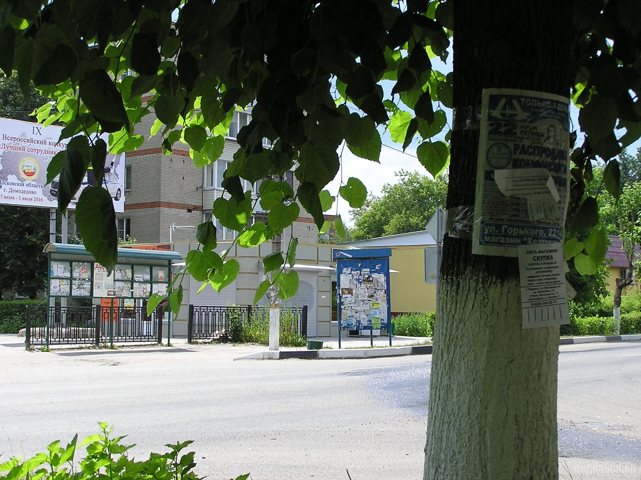 Царство объявлений. Улица Горького. 27 июня 2016 г.