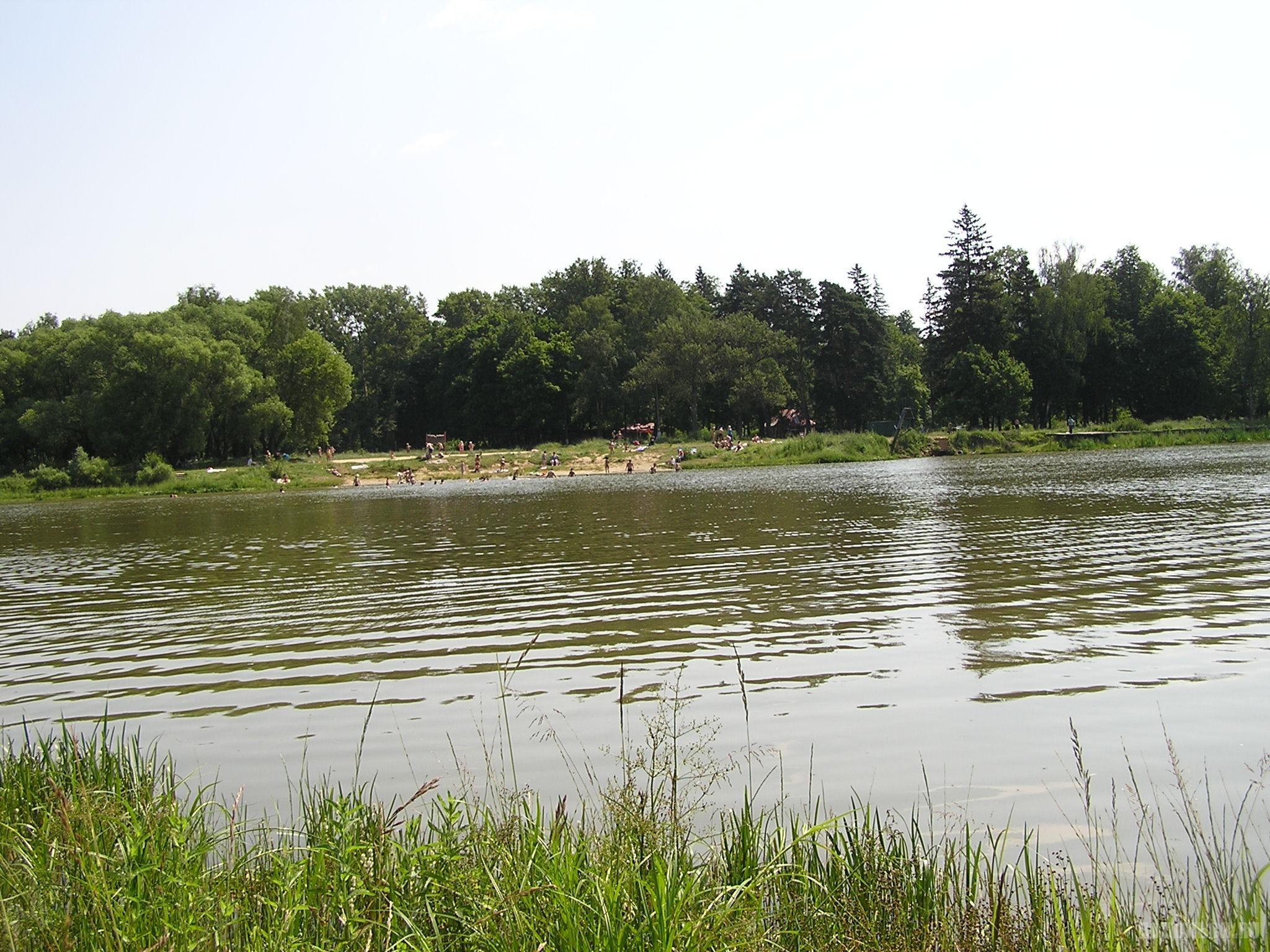 Лаговский пруд. 27.06.2016.