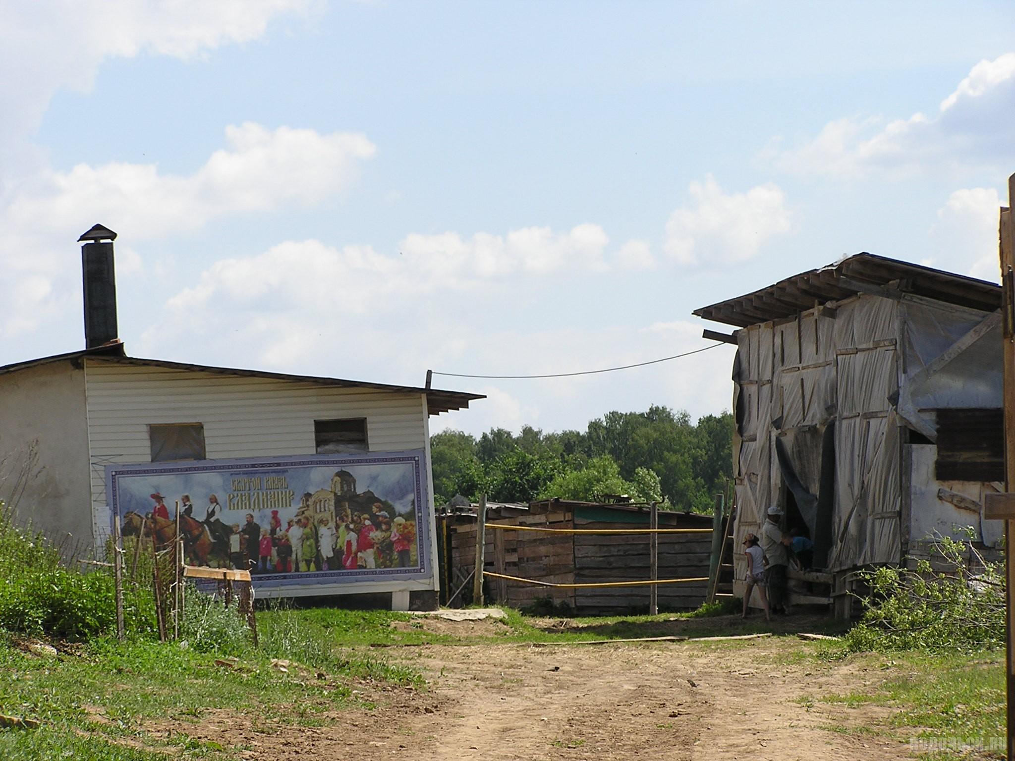 Конный двор в Сынкове. Июнь 2016 г.