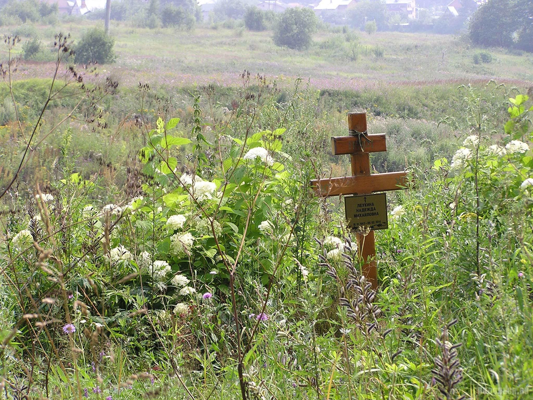 На старом Сергеевском кладбище. 24 июля 2016 г.