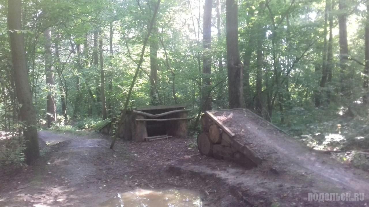 В еринском лесу за санаторием.
