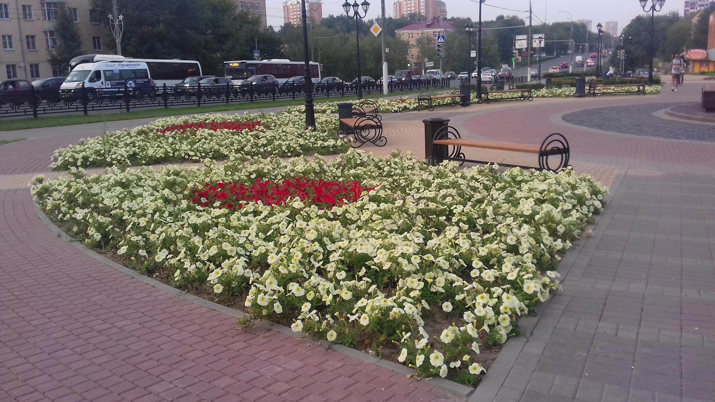 Бульвар Льва Толстого. 26.07.16