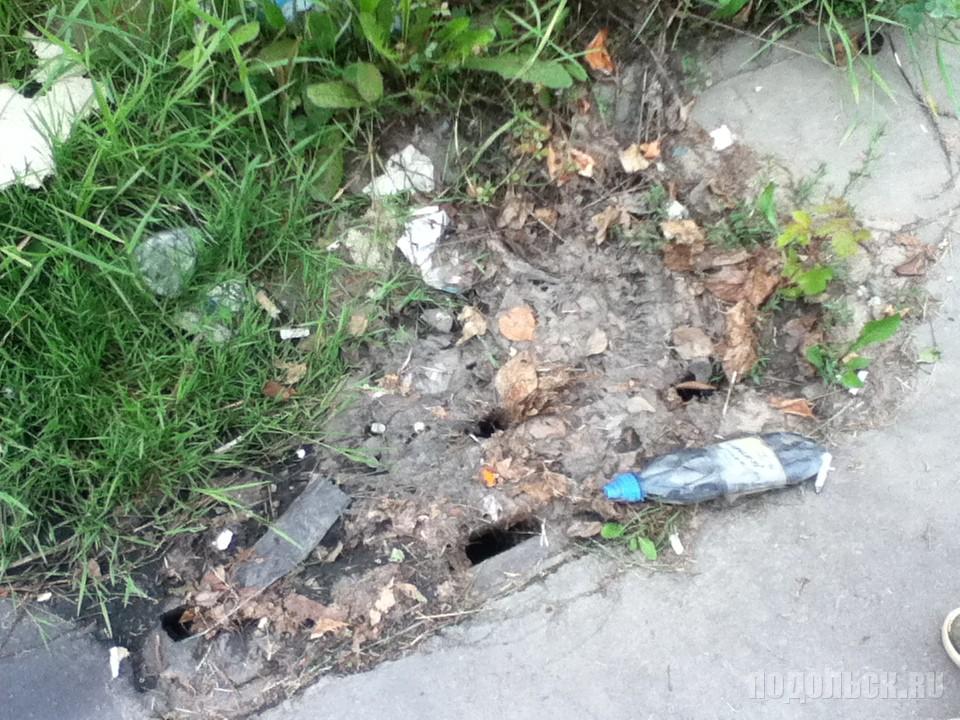 Забитый сток ливневой канализации. Климовск, август 2016 г.