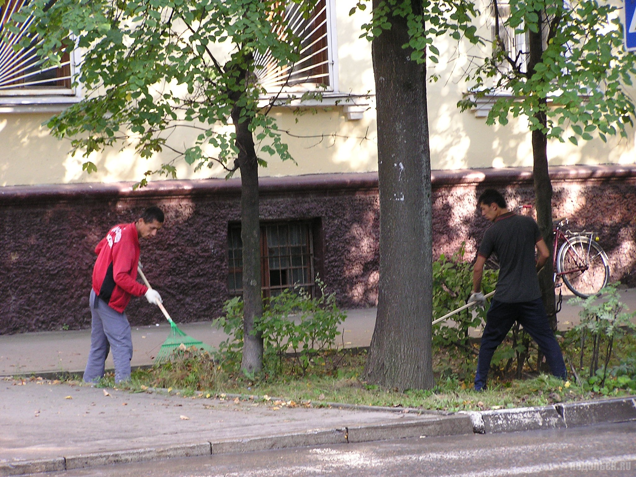 Уборка листвы в августе.