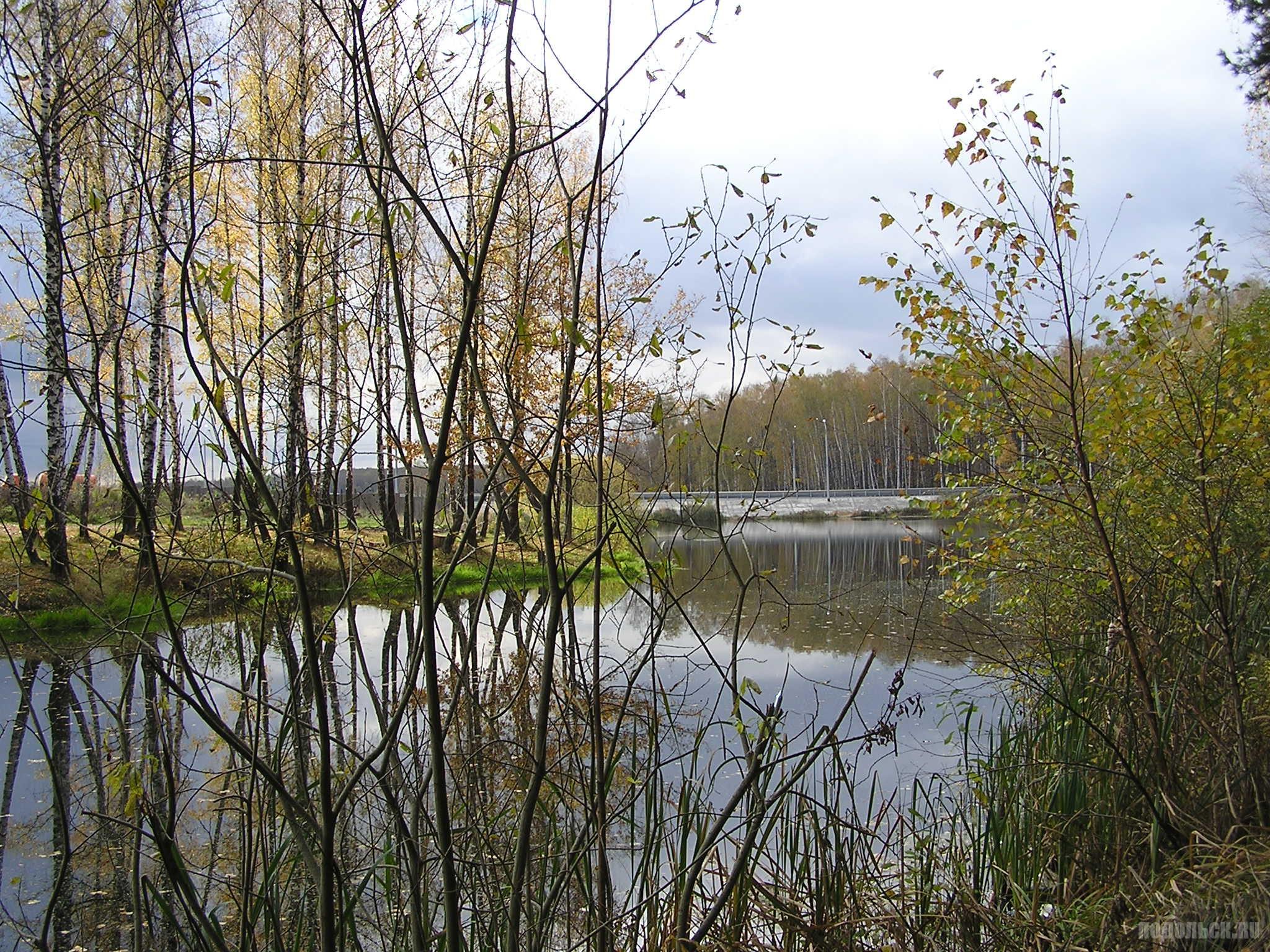 У поселка Леспроект 15 октября 2016 г.