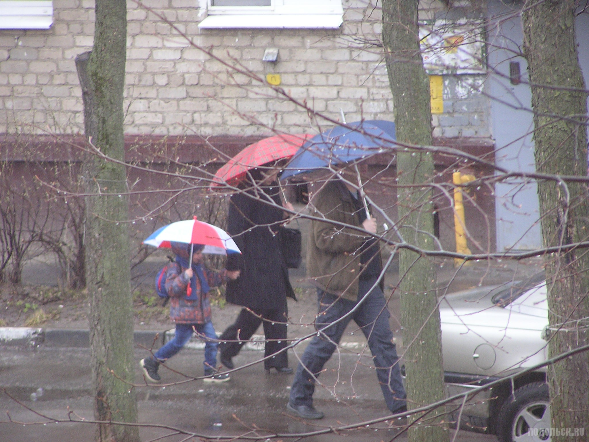 Семья под дождем. 16 апреля 2017.