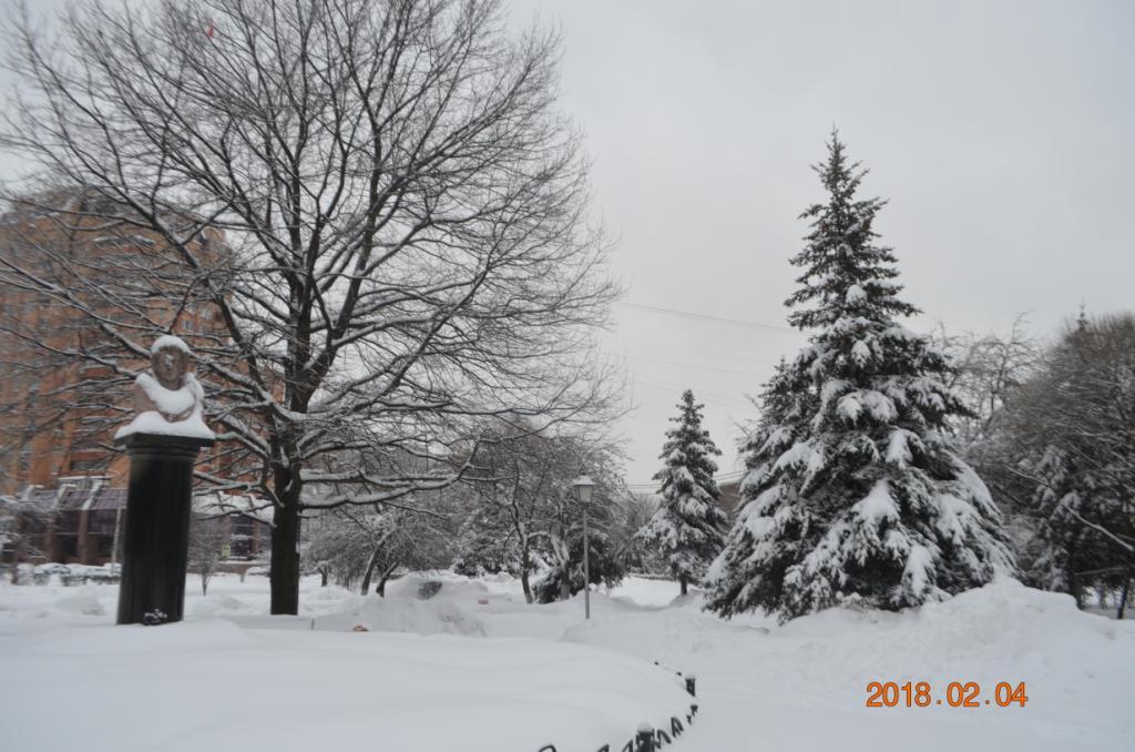 В сквере Пушкина