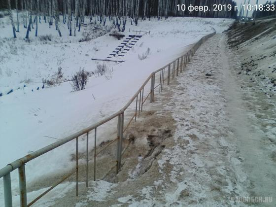 У старого кладбища в Сергеевке. 10.02.2019
