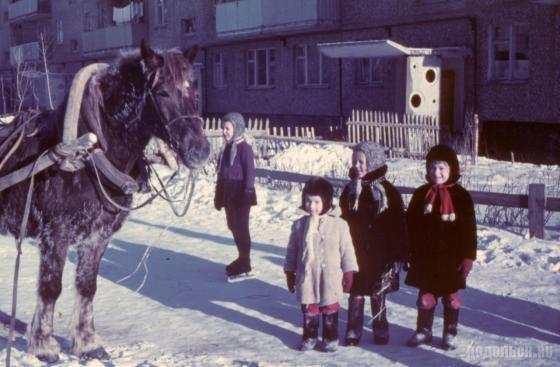 1968-1970 гг. Подольск на улице Юбилейной у дома 26а