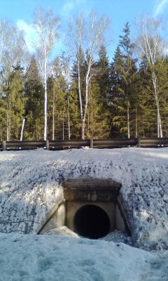 """Тоннель"" у кладбища. 02.2019"