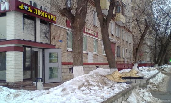 Львы на Комсомольской. 02.2019