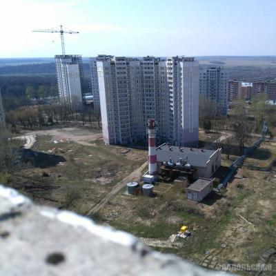Кузнечики-2. Апрель 2018
