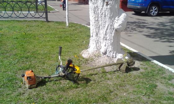 Покос на Ревпроспекте. 6 мая 2019