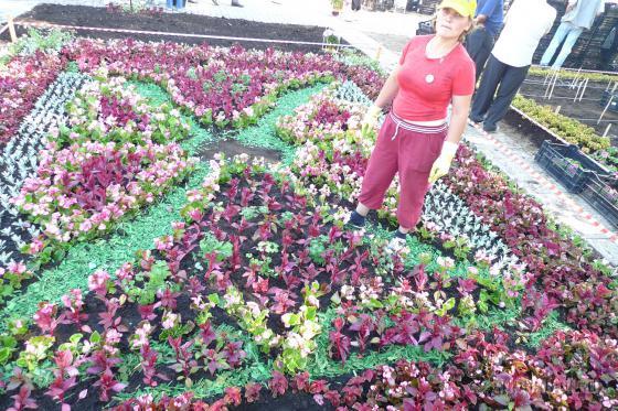 """VII фестиваль """"Цветы Подмосковья - 2009"""""""